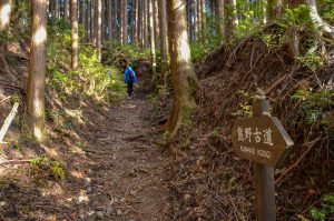 KUMANO KODO Pilgrimage Bike & Hike