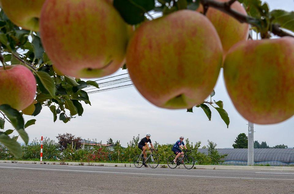 The Stage 9 of TRANS-TOHOKU Bike Tour